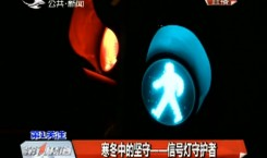 第1报道|寒冬中的坚守——信号灯守护者
