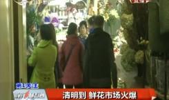 第1报道 清明到 鲜花市场火爆