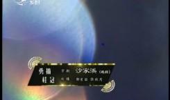 二人转总动员|勇摘桂冠:郭星笛 张秋月表演京剧《沙家浜》