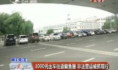 第1報道|3000元出車往返鲅魚圈 非法營運被抓現行