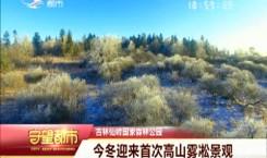 守望都市|吉林仙峰国家森林公园首迎今冬高山雾凇景观