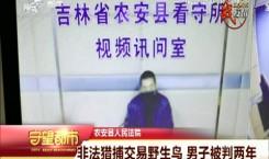 守望都市|农安县:非法猎捕交易野生鸟 男子被判两年