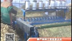 乡村四季12316_副产品加工变冬季主业