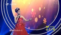 放歌中国_歌曲:绒花