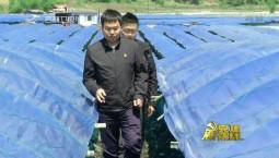 """党建新视线_高世龙:我为""""老农夫""""代言"""