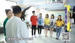 7天游记_旅游星担当特别节目·走进大安酿酒厂