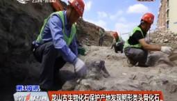 龙山古生物化石保护产地发现鳄形类头骨化石
