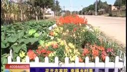 乡村四季12316|花开农家院 幸福乡村美