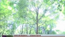 【壮阔东方潮 奋进新时代——庆祝改革开放40年】县域巡礼在改革开放中成长:红色基因在磐石黑土中根植