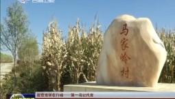 【脱贫攻坚在行动——第一书记代言】张健:我为马家岭村多彩花卉代言