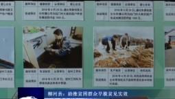 吉林报道|柳河县:助推贫困群众早脱贫见实效