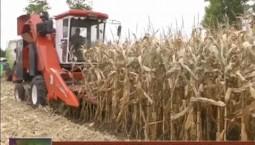 2019年我省秸秆覆盖还田保护性耕作面积计划达到1000万亩