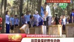 吉林省东北虎园:雕鸮等16只猛禽被放归自然