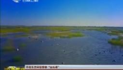 """【中央生态环保督察""""回头看""""】白城:河湖连通满眼春 生态保护显成效"""