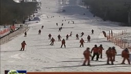 吉林市:开展特色冰雪旅游活动 打造雾凇之都滑雪胜地
