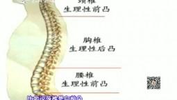 吉林卫生|凸起的脊柱(上)|2018-12-05