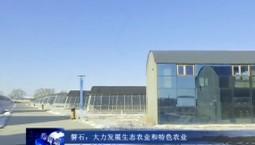 吉林报道|磐石:大力发展生态农业和特色农业