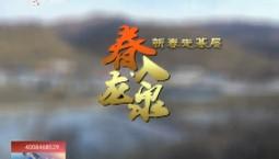 乡村四季12316|春入龙泉