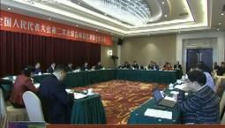 吉林代表团审查计划报告和预算报告