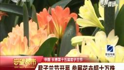 守望万博官网manbetx客户端|君子兰节开幕 参展花卉超十万株