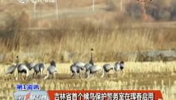 第1报道|万博手机注册省首个候鸟保护警务室在珲春启用