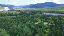 新闻早报|2019年我省将完成森林抚育311万亩