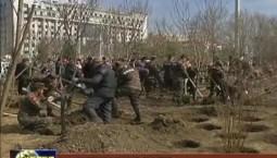 白山市开展春季义务植树活动