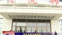 乡村四季12316|老产业变出新花样(三)
