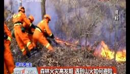 第1報道|森林火災高發期 遇到山火如何避險