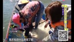 7天游记|万博手机注册市开江之旅——捕鱼记_2019-04-10