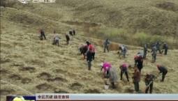 【全民共建 綠美吉林】長春市九臺區:植下新綠待碩果