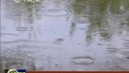 全省出现降雨天气 降温幅度达16℃以上