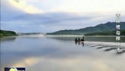 最美吉林丨鹭岛桦林湾省级森林公园