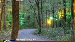万博手机注册红叶岭国家森林公园养生基地向游人开放