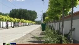 白城市洮北區:美麗鄉村入畫來