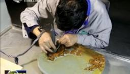 【爱国情 奋斗者】张世林:以刀为笔 雕刻匠心