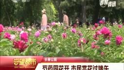 守望都市|长春公园芍药园花开 市民赏花过端午