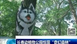 """新闻早报 长春动植物公园惊现""""奇幻森林"""""""