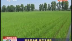 乡村四季12316|科学防虫病 增产又提质