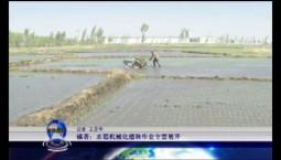 吉林报道|镇赉:水稻机械化插秧作业全面展开