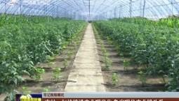 【牢记殷殷嘱托】吉林:加快推进农业现代化 争当现代农业排头兵