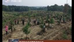 梅河口市启动雨季造林行动
