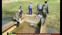 松花湖水鸟栖息地遭灾 40多只野生鸟类受救助