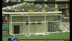 长春市文化广场新鸽舍基本完工 200对广场鸽已经落户