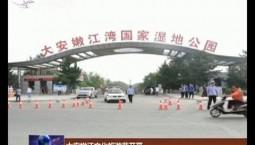 大安嫩江文化旅游节开幕