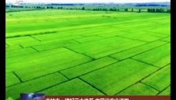 吉林市:建好三大体系 向现代农业进发