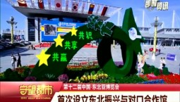 守望都市 东北亚博览会:首次设立东北振兴与对口合作馆
