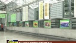 吉林省农民书画摄影展在长春举行