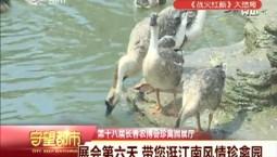 守望万博官网manbetx客户端|农博会:展会第六天 带您逛江南风情珍禽园