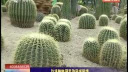 乡村四季12316|沙漠植物园里的异域风情